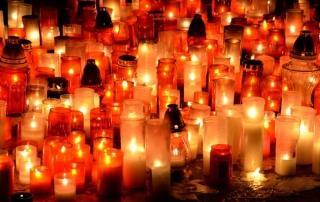 daug-zvakiu